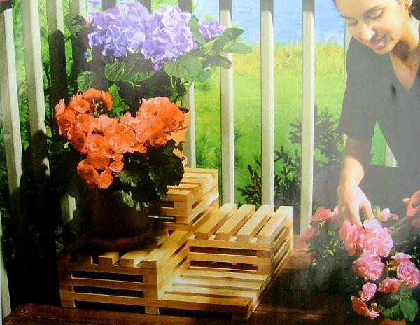 Фото - Сеть магазинов цветов