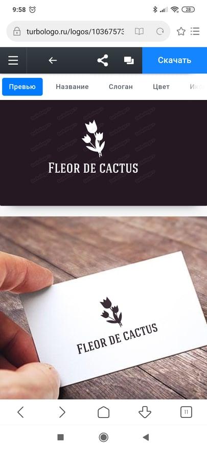 Фото - fleor de cactus