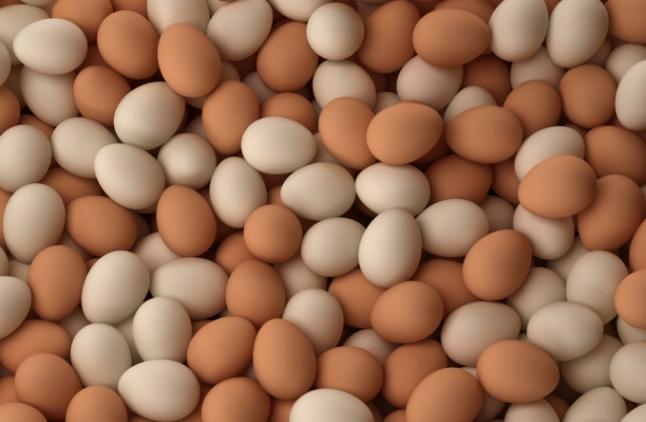 Фото - Реклама на яйцах