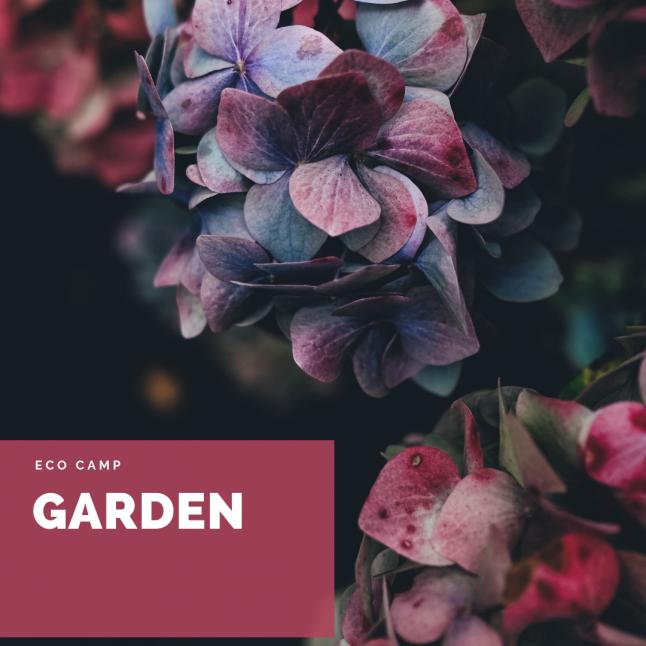 Фото - Garden eco camp