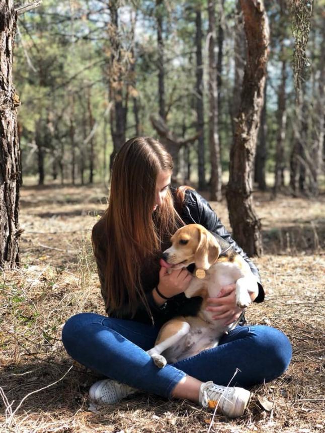 Фото - Гостиница для собак