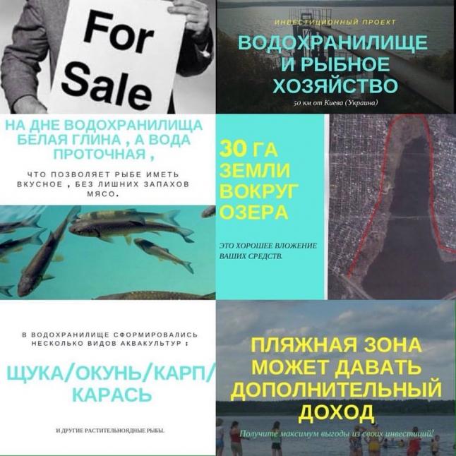 Фото - Продам рыбный бизнес под Киевом