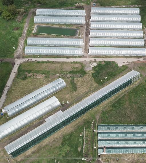 Фото - Действующий Тепличный комплекс по выращиванию органики
