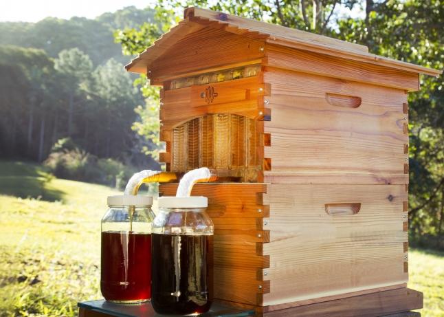 Фото - специально сконструированные картриджи для сбора меда