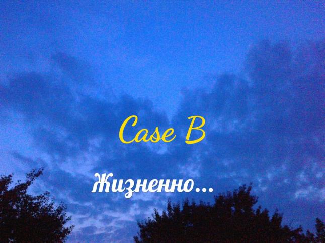 Фото - Case B