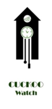 Фото - Интернет-магазин по продаже наручных часов