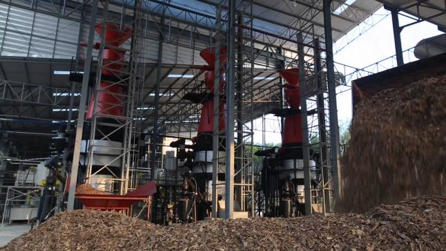 Фото - Зеленый тариф на биомассе