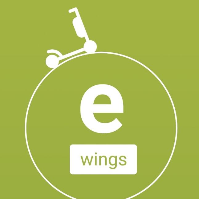 Фото - E-wings