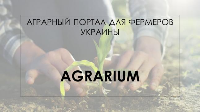 Интерактивная площадка  для фермеров и потребителей