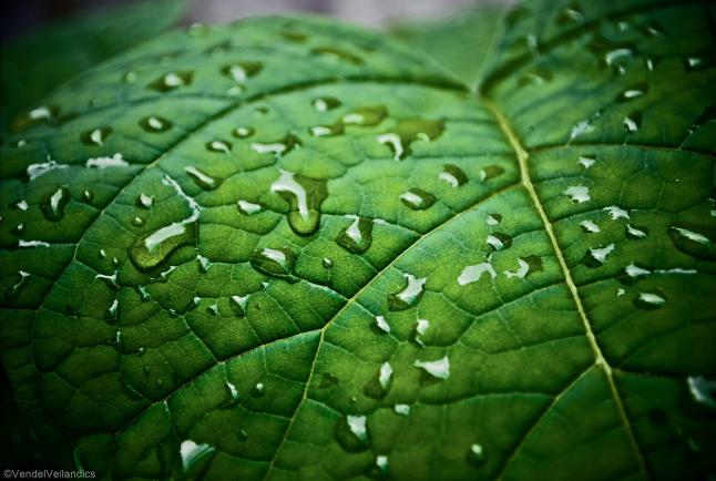 Фото - Промышленное производство органоминеральных удобрений