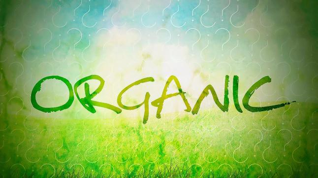 Фото - Органическое фермерское хозяйство