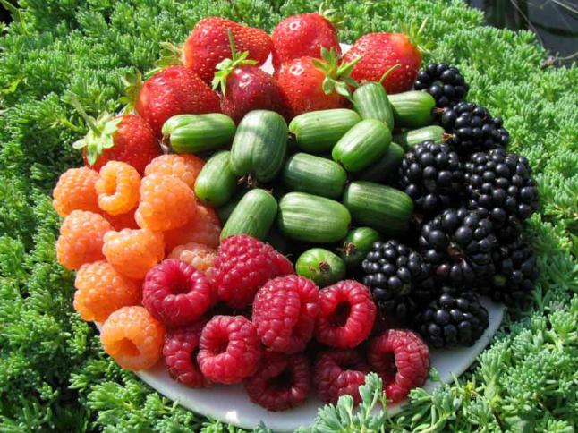 Фото - Выращивание органических ягод и фруктов