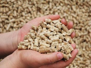 Фото - Производство древесных гранул