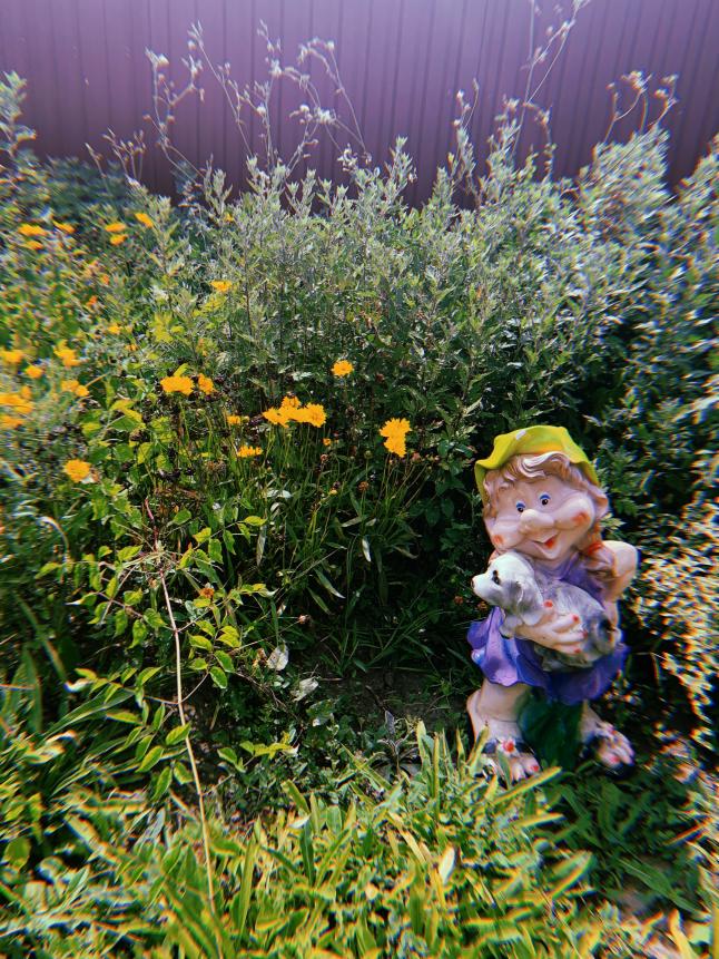 Фото - Площадка(сайт) продать/купить различные растения.