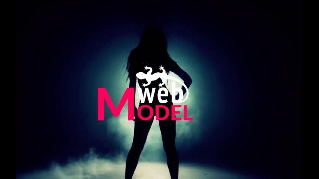 Фото - общение моделей в видеочате