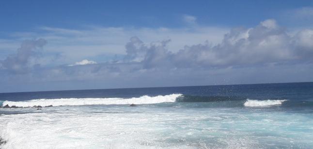 Фото - организация туров на Гавайские острова