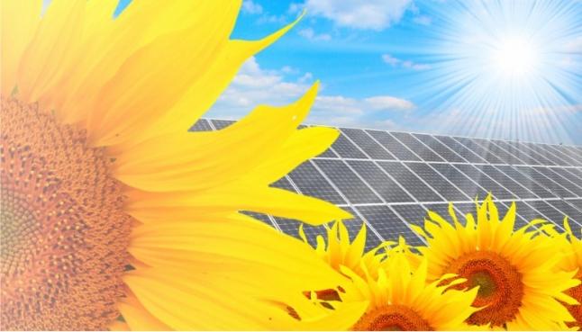 Фото - Промышленная солнечная электростанция 1 МВт