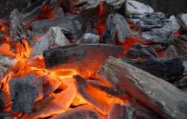 Фото - Производство древесной пеллеты и древесного угля