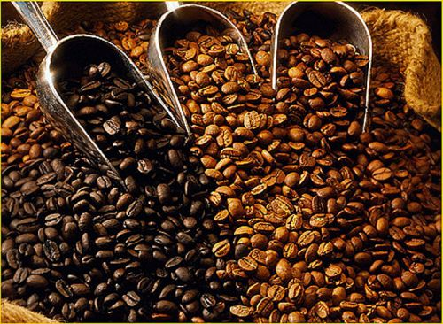 Фото - Вертикально-интегрированный кофейный бизнес.