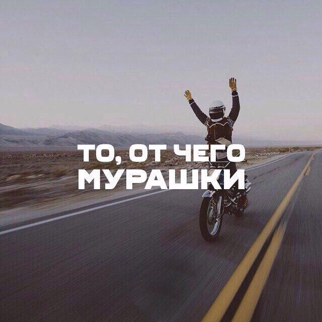 Фото - Дмитрий  YOUTUBE  канал