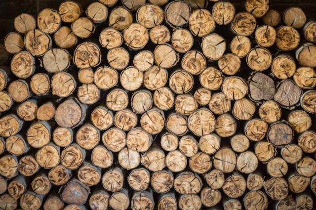 Фото - Заготовка и реализация дров